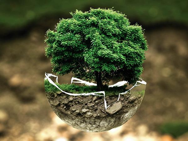 Umweltfreundliches Bauen